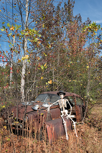 """SEver the epitome of a super cool spirit with his hat, cigar, and shades, Jake rests his bones on a sunny fall day in the afterlife by sitting on the lopped-off door of a junkyard car. It's a rare rusting """"Henry J"""" from the fifties he's using as a lazy man's throne, and what-the-hey, a junkyard is better than a graveyard any day for a haunting specter! And what better car to drive around in to make Halloween visits than this spook-mobile?"""