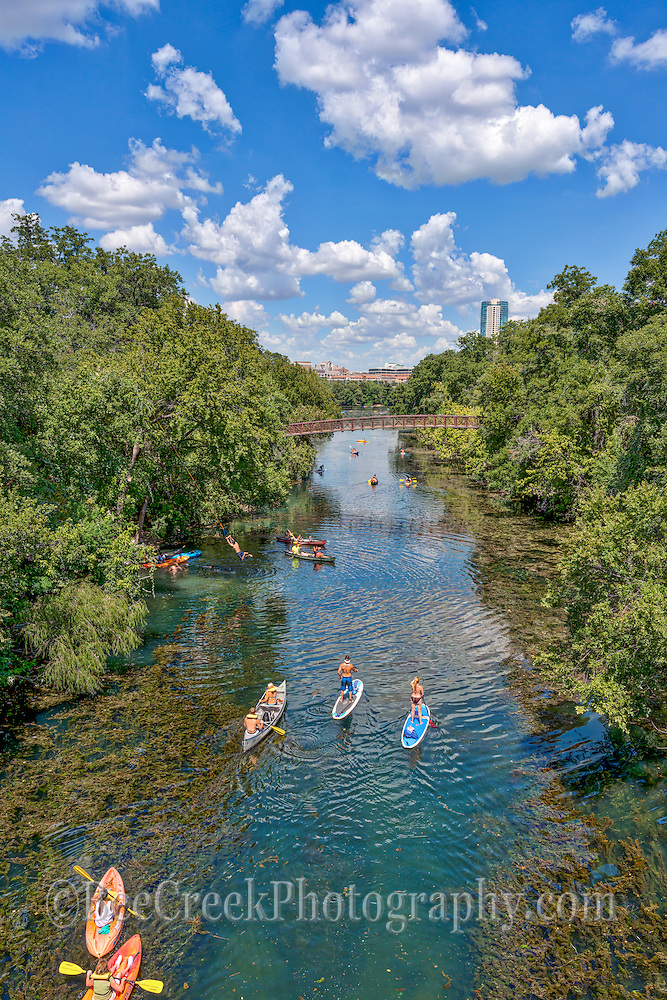 Barton Springs on a Summer Day