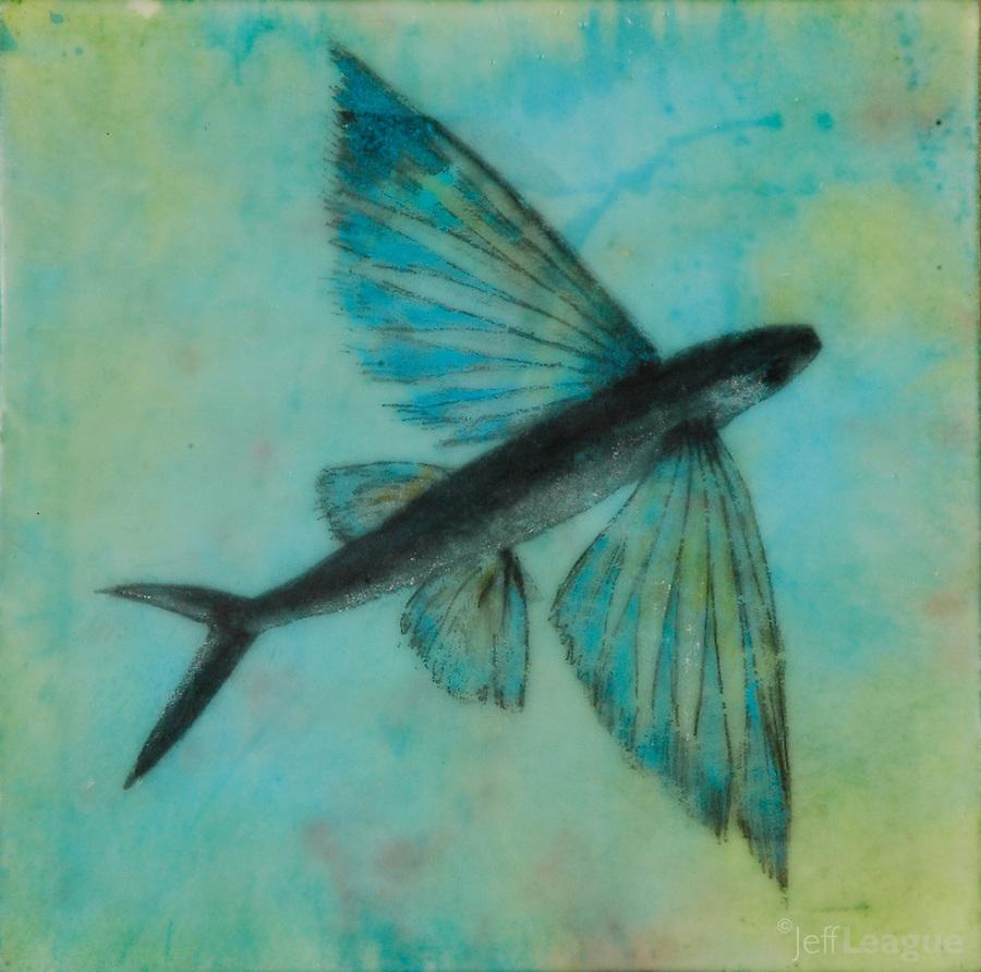 flying fish by cacodaemonia - photo #8