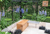 Modern upscale white city urban patio with black mondo grass Ophiopogon, black fence, low wall, boxwood Buxus, blue Delphinium, garden bench
