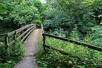 Hadrian's Wall Footpath Crosses a Stream between Newtown and Walton,   Cumbria, England, UK.