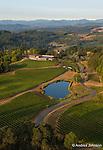Elk Cove's Estate Vineyards, Gaston, Willamette Valley, Oregon