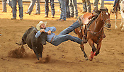 2015 Rodeo of the Ozarks