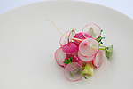 Petrale Sole infused with kelp, sauce of brown butter, radishes and grapefruit