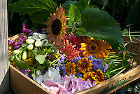Box of flowers picked for Yarmouth Community Garden and Meals on Wheels customers, Yarmouth Maine
