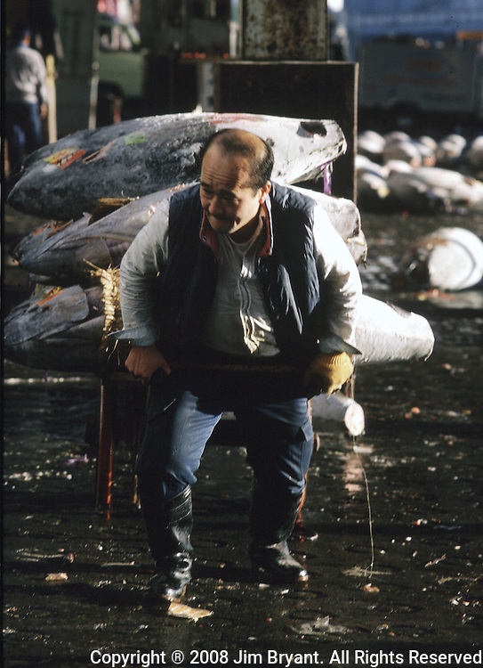 A fish handler hauls off a cartload of purchased tuna at the Tsukiji Fish Market in Tokyo, Japan where a skilled army of licensed middlemen and buyers purchase tuna and a variety of seafood for sale in the market's 1,400 shops. Because of the Japanese passion for freshness, all the fish sold will be consumed by Tokyo residents the following day. (Jim Bryant Photo).....