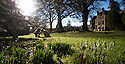 2015_01_18_Huntsham_Court_Snowdrops