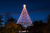 The Zilker Tree is lit each evening in December and shines bright and lights up the evening sky in Zilker Park.