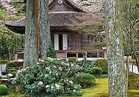 Sanzen-in_Kyoto photos