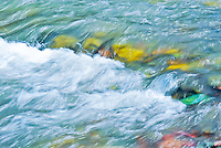 &quot;RUNNING EAGLE MEDICINE&quot;<br />