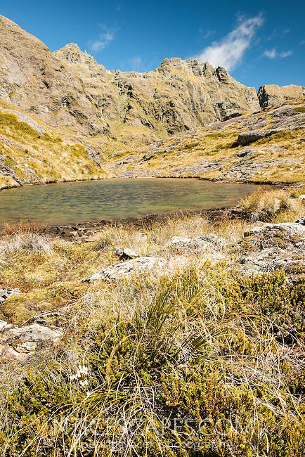 Alpine tarn near Routeburn Track with Serpentine Range in background, Mt. Aspiring National Park, UNESCO World Heritage Area, Central Otago, New Zealand, NZ