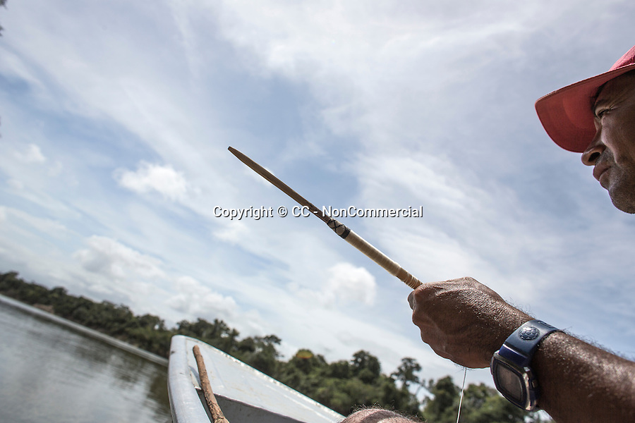The traditional fishing in the Makushi Amerindian Community was done with bow and arrow (Rupununi river). Nowadays, the big fishes are rarer and the fishermen prefer use nets.