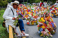 A man looks his flowers before to start the 58th Silleteros' parade in the framework of the flowers' fair, this year the silleteros parade was declared intangible heritage of Colombia. Medellín, Colombia 09/08/2015