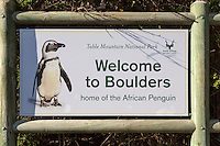 South Africa.  African Penguins at Boulders Beach, near Simon's Town, Welcoming Sign, Western Cape Province.