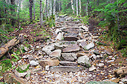 September 2014 - Stone staircase along Mt Tecumseh Trail in Waterville Valley, New Hampshire during the summer months. A herd path has formed on the left side of the steps from hikers avoiding (not using) the steps. Herd paths are a common problem along trails, and if they are not blocked, they can create more erosion issues to the trail. When this image was taken, this staircase was only a few years old.