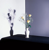 SHADOWS - Umbra &amp; Penumbra<br />