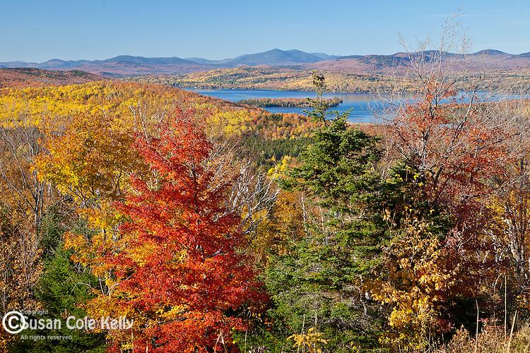 Fall foliage on Rangeley  Lake in Rangeley, ME, USA