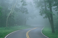 Road in Fog, Shenandoah National Park, Skyline Drive, Blue Ridge Mountains, Virginia, establsihed 1929