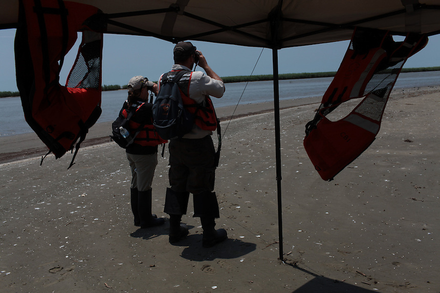 Wildlife and Fisheries checking for oiled birds on Popcorn beach in Venice, LA, on July 10th, 2010.