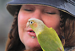 A bird finds the perfect perch on his master shoulder in walking through the Tenderloin district of San Francisco.