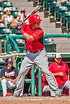 21 March 2015: Washington catcher Cole Leonida in action during a Spring Training Split Squad game against the Atlanta Braves at Champion Stadium at the ESPN Wide World of Sports Complex in Kissimmee, Florida. The Braves defeated the Nationals 5-2 in Grapefruit League play. Mandatory Credit: Ed Wolfstein Photo *** RAW (NEF) Image File Available ***