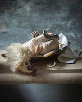 Europe, France,Bourgogne, Sa&ocirc;ne-et-Loire (71): Poularde de Bresse AOP // Europe, France,Burgundy, Sa&ocirc;ne-et-Loire  : Bresse poulard PDO <br /> - Stylisme : Val&eacute;rie LHOMME