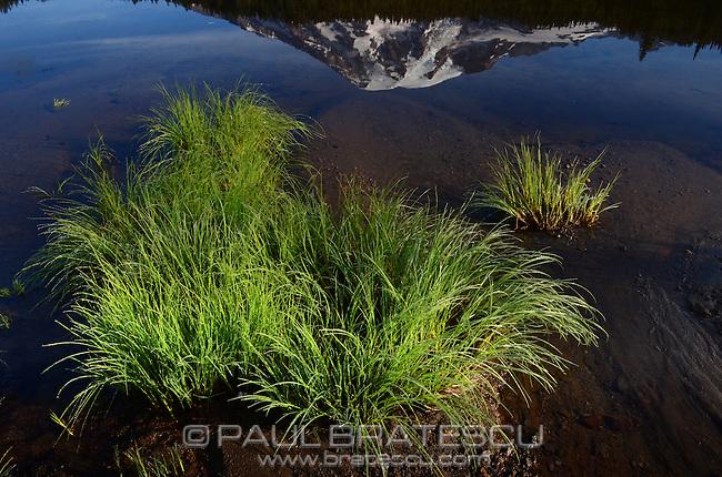 Mount Rainier reflection.