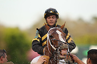 HOT SPRINGS, AR - MARCH 18: Love That Lute #9, ridden by Luis Contreras after winning in the 6th race at Oaklawn Park on March 18, 2017 in Hot Springs, Arkansas. (Photo by Justin Manning/Eclipse Sportswire/Getty Images)