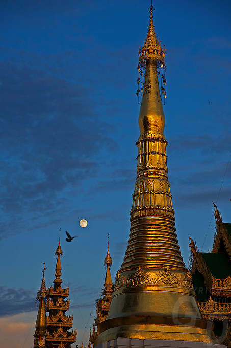 Shwedagon Pagoda during the month of the full Moon, Yangon Myanmar