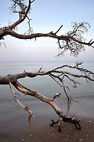 Cape Kolka, Slitere National Park, Latvia