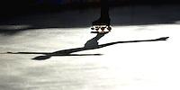 LX Campeonato Mundial FIRS de Patinaje Artistico / LX FIRS World Championships  Figure Skating Cali