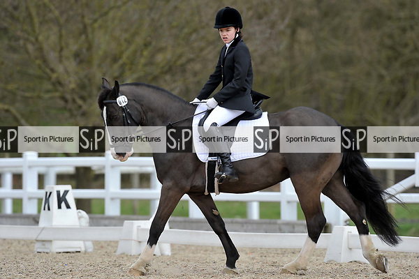 Class 2. Intro B. Unaffiliated dressage. Brook Farm Training Centre. Essex. 19/03/2017. MANDATORY Credit Garry Bowden/Sportinpictures - NO UNAUTHORISED USE - 07837 394578