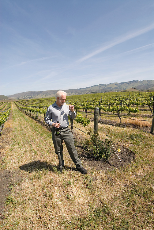 California, San Luis Obispo County: Winemaker Harry Hansen at Edna Valley Vineyards, noted for his Chardonnay. Model released..Photo caluis106-71019..Photo copyright Lee Foster, www.fostertravel.com, 510-549-2202, lee@fostertravel.com