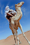 Nomad riding on a dromedary in the Sahara desert of Morocco.