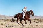 Horse race Khovd. Mongolia