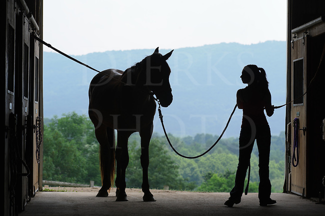 Young woman silhouetted with horse in crossties in open barn door, preparing to saddle up for a trail ride, Pennsylvania, PA, USA.