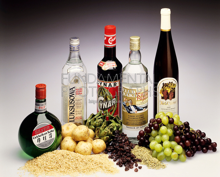 FERMENTATION &amp; DISTILLATION: ALCOHOLIC BEVERAGES<br />