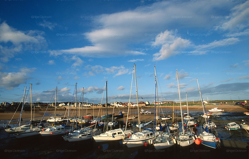 Elie harbour, town, boats moored on sands with changing tides. Elie, East Neuf of Fife, North Sea, Scotland..Many of Scotland's castles are associated with ghosts, apparitions and strange noises. They have histories in some cases stretching back over 800 years. Some 150 Scottish castles are known to have this reputation. Apart from histories of murder, romance, and war, there were trials for witchcraft are recorded over several centuries. Fife county of Scotland is situated between the Firth of Tay and the Firth of Forth, with inland boundaries to Perth and Kinross and Clackmannanshire. It was originally one of the Pictish kingdoms, known as Fib, and is still commonly known as the Kingdom of Fife within Scotland.