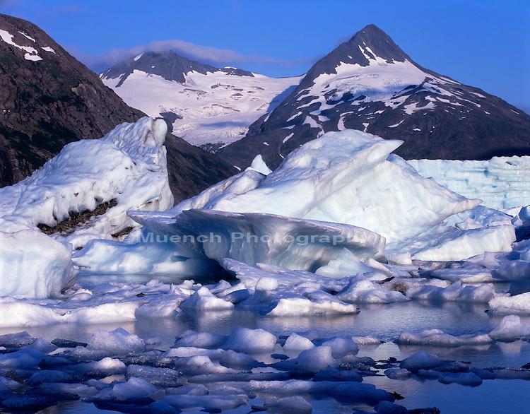 Portage Glacier   ALASKA