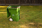 Yard work clean up and mowing with recycling bin