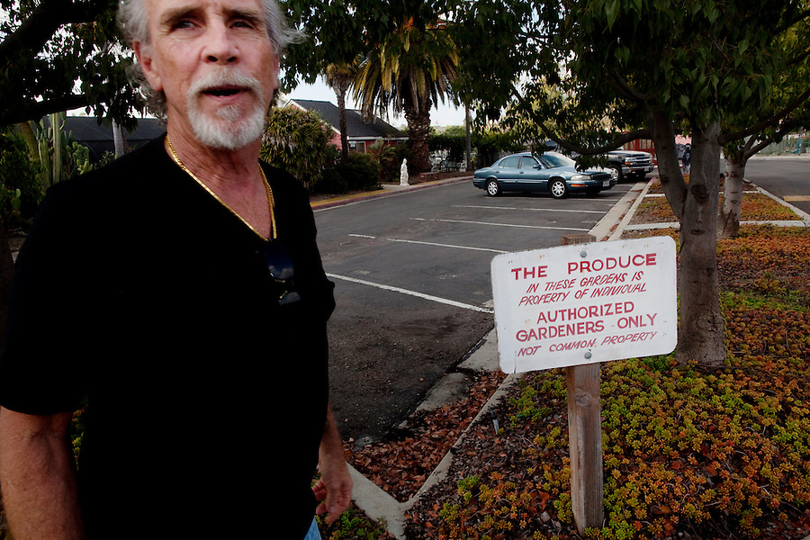 "Laguna Woods, California, October, 26, 2010 - Lonnie Painter with a sign explaining the privacy of the gardens at Laguna Woods Community Gardens. He has been a resident of Laguna Woods Village for the past eleven years and is also the head of the 100-member marijuana dispensary there named Laguna Woods for Medical Cannabis. ""We do this by the book, to the letter of the law. We are not potheads. We are people with legitimate medical needs."" said Painter. Despite their best efforts, the group has faced some challenges recently. The board that oversees the community recently banned the growing of marijuana in the community gardens, despite the fact that each person has their own fenced and locked garden and the entire compound is surrounded by a chain-linked fence with barbed-wire. ""It's just an excuse to shut this down by a few misguided people,"" says Painter. ""We are all volunteers on the board here. We do this to try to help people in need."" Indeed, many of the purported health benefits of marijuana target problems that typically plague older people, such as chronic shingles, arthritis pain, and symptoms of multiple sclerosis and cancer, such as loss of appetite, chronic pain and nausea. California's Compassionate Use Act, passed in 1996, allows people with a prescription to use and cultivate medicinal marijuana."