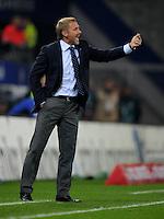 FUSSBALL   1. BUNDESLIGA   SAISON 2011/2012    11. SPIELTAG Hamburger SV - 1. FC Kaiserslautern                          30.10.2011 Trainer Thorsten FINK (Hamburg) engagiert an der Seitenlinie