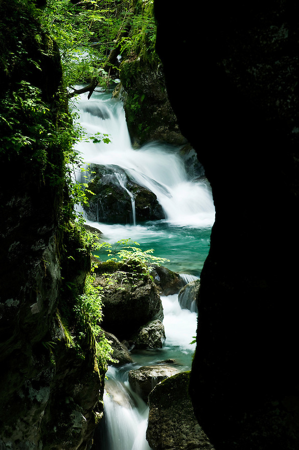 Zadlascica canyon, river Zadlascica, &quot;bears's head&quot; (medvedova glava)<br /> Triglav National Park, Slovenia<br /> June 2009
