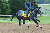 HOT SPRINGS, AR - April 14: Count Fleet contender Moe Candy gallops at Oaklawn Park on April 14, 2017 in Hot Springs, AR. (Photo by Ciara Bowen/Eclipse Sportswire/Getty Images)
