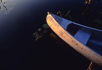 Canoe on the water, Okefenokee Swamp, Georgia, USA