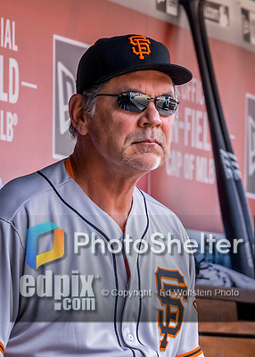 7 August 2016: San Francisco Giants Manager Bruce Bochy looks out from the dugout prior to a game against the Washington Nationals at Nationals Park in Washington, DC. The Nationals shut out the Giants 1-0 to take the rubber match of their 3-game series. Mandatory Credit: Ed Wolfstein Photo *** RAW (NEF) Image File Available ***