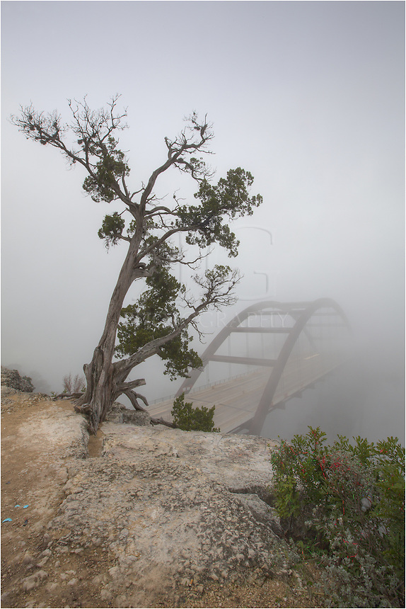 From the top of the cliff overlooking Pennybacker Bridge, the fog was so thick on this morning that you could not see the other side of the bridge. The view of this Austin icon was a rare treat, indeed.