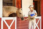 20120803 Sletten Horses
