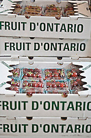 Boxes of Ontario grown produce.