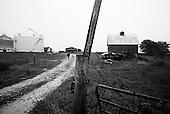 Wataga, Illinois<br /> October 13, 2014<br /> <br /> Harvesting GMO grain in central Illinois on the O&quot;Connor farm